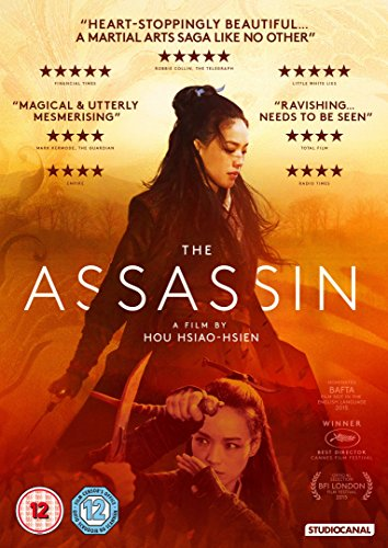 The Assassin [DVD] [2016] UK-Import (Region 2), Sprache-Englisch.