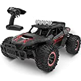 tech rc Car 1:16 Scale, Remote Control Car Off-Road RC Trucks 2.4 GHz with 2 Rechargeable Batteries, RTR RC Race Cars for Kids Boys