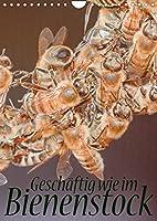 Geschaeftig wie im Bienenstock (Wandkalender 2022 DIN A4 hoch): Ein Einblick in das Innenleben des Bienenstocks (Monatskalender, 14 Seiten )