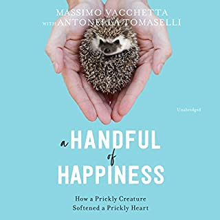 A Handful of Happiness audiobook cover art