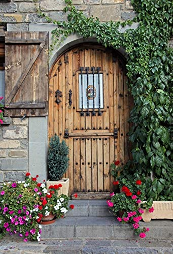 Old Rural House Village Porch Yard Vine Door Spring Baby Photo Background Photography Backdrop Photocall Photo Studio A4 3x3m