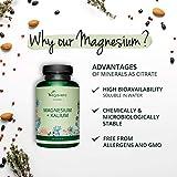 Zoom IMG-2 magnesio e potassio vegavero 180