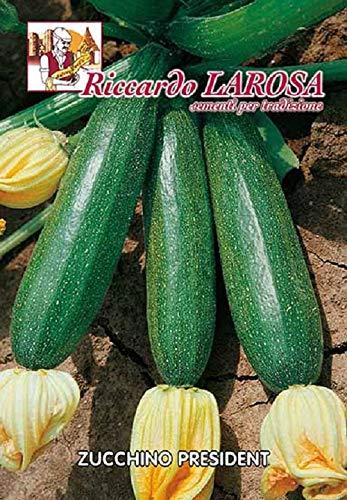 Semi Sementi Zucchino President Vegetale Cucurbita Pepo Seeds