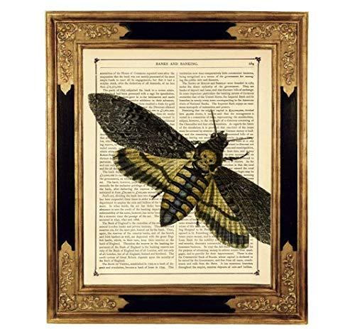 Totenkopf Motte Hannibal Druck Kunstdruck auf antiker Buchseite Gothic Geschenk Geburtstag Halloween Steampunk Insekt ungerahmt