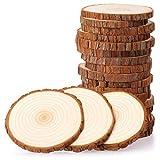 Fuyit Holzscheiben 20 Stück