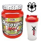 Amix Recovery Max - 575 gr + batidor Amix regalo