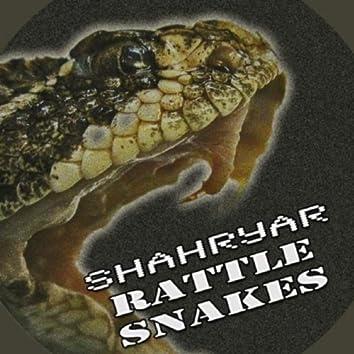 Rattle Snakes (Original Mix)