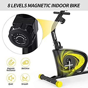 cycool Recumbent Exercise Bike, Magnetic Indoor Cycling Bike Stationary Bikes with Adjsutable Resistance and LCD Display For Home Cardio Workout (black and orange)