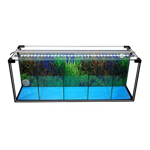 Komplettset Aquarium Zucht-Becken Betta 29 L, Garnelen-, Aufzucht-, Kampffisch-Aquarium inkl. LED-Lampe,Luftpumpe