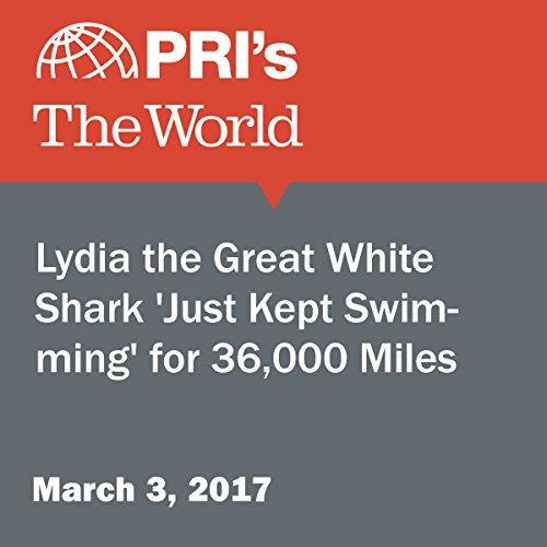 Lydia the Great White Shark 'Just Kept Swimming' for 36,000 Miles audiobook cover art