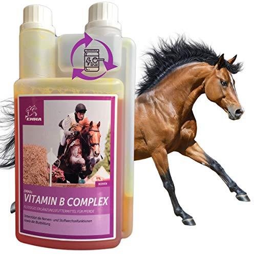 Vitamin B Komplex für Pferde I B-Vitamine b1 b6 Vit b12 Calcium I unterstützt Nervenfunktionen I für Stoffwechsel Immunsystem Nervensystem Energie I Vitamin-Versorgung Senioren Fohlen Sportpferde 1L