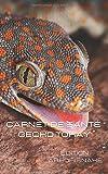 carnet de santé Gecko Tokay
