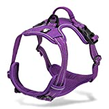 Chai's Choice Best Outdoor Adventure Dog Harness (Purple X-Small)