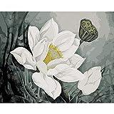 JUDING Interessante Pittura Digitale Loto Bianco Pittura Digitale affresco in Soggiorno per Adulti Senza Cornice 40x50cm