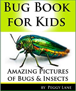 Bug Book for Kids: Amazing Pictures of Bugs and Insects! Learn Fun Facts in this Kids Book about Bugs from Australia by [Peggy Lane]