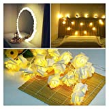GYY Luces de Cadena LED 1m 2m 3m 4m Rosa 10 Leds/m Rosa Azul Blanco púrpura...
