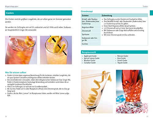 Barlexikon: Mixgetränke, Barkunde, Spirituosen - 3