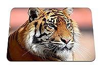 22cmx18cm マウスパッド (虎顔目大きな猫) パターンカスタムの マウスパッド