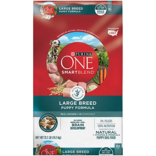 Purina ONE Large Breed Puppy Food, SmartBlend Natural Puppy Food Formula - 31.1 lb. Bag