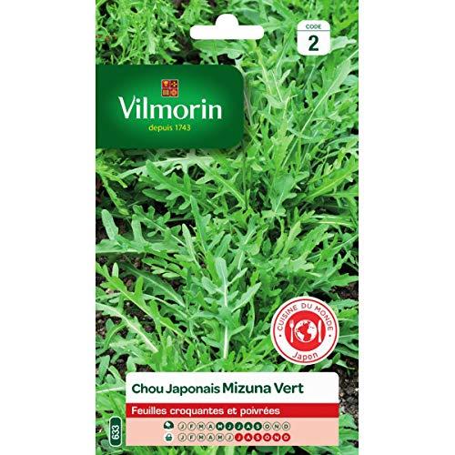 Vilmorin - Sachet graines chou japonais mizuna vert