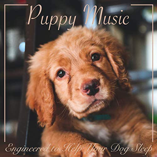 Puppy Music : Engineered to help your Dog Sleep