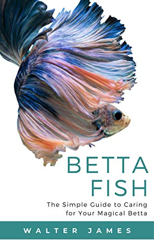 Betta Fish: The Simple Guide to Caring for Your Magical Betta (English Edition)