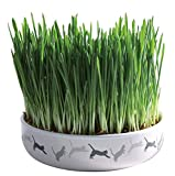 Trixie 42341 Ceramic Cat Grass