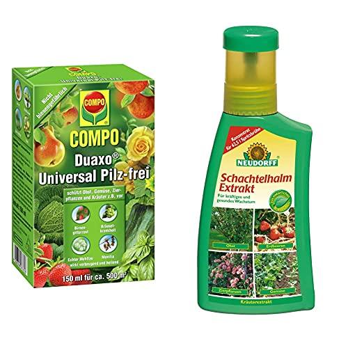 Compo Duaxo Universal Pilz-frei, Bekämpfung von Pilzkrankheiten an Obst, Gemüse, Zierpflanzen und Kräutern, Konzentrat inkl. Messbecher, 150 ml & Neudorff 265 Schachtelhalm Extrakt, 250 ml