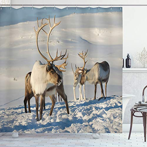 ABAKUHAUS Winter Shower Curtain, Reindeers Natural Environment Tromso Northern Norway Caribou Antler Wildlife, Cloth Fabric Bathroom Decor Set with Hooks, 78 Inches, Brown Ivory Blue