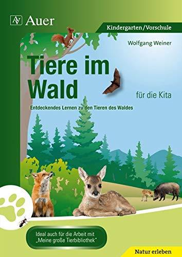 Tiere im Wald für die Kita: Entdeckendes Lernen zu den Tieren des Waldes (Kindergarten)