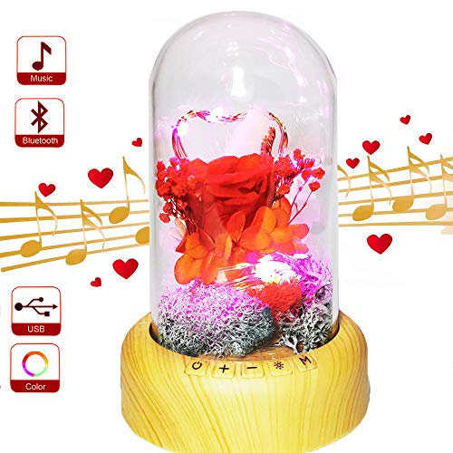 SWEETIME Rose Night Light, Real Enchanted Rose in Glass Dome, Preserved Rose Flower Lamp with Bluetooth Speaker, Eternal Immortal Flowers Rose Gift for Her on Valentine Day.(Red)