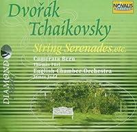 Serenade For Strings, Etc: Furi / Camerata Bern, Judd / Eco