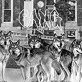 Gang (feat. Yfc Speedy) [Explicit]