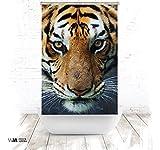 ERSATZ KLEINE Wolke Duschrollo für Leerkassette Tiger Textil Badewanne