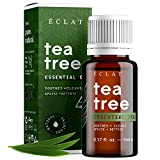 100% 30-DAY MONEY-BACK ECLAT GUARANTEE: Yes, it's a fact. The Eclat Tea Tree Essential Oil is completely pure, vegan and 100% natural. A powerful anti-inflammatory with antibacterial properties, tea tree oil is renowned for its healing, soothing and ...