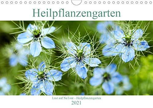 Lust auf NaTour - Heilpflanzengarten (Wandkalender 2021 DIN A4 quer)