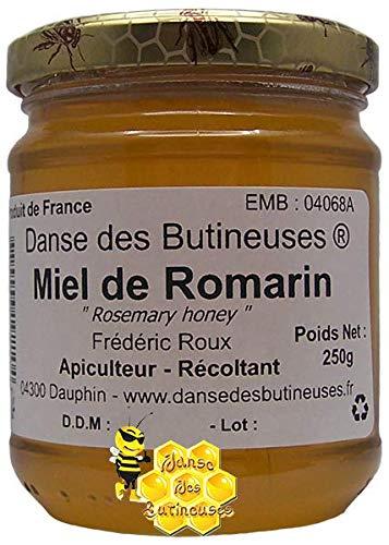 Miel de Romarin Pot de 250g / DIRECT PRODUCTEUR / Produit de France
