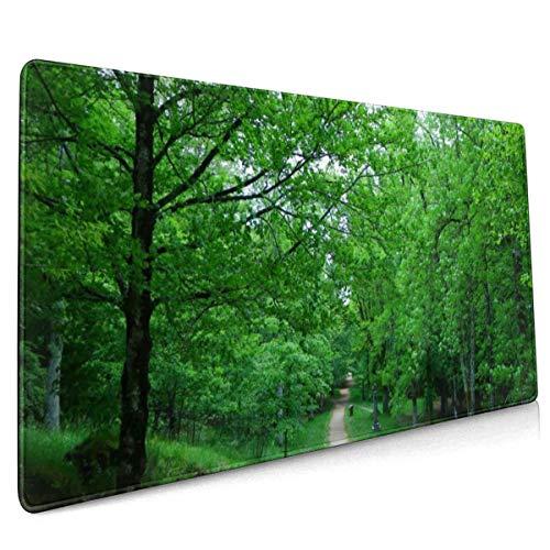 Alfombrilla de ratón antideslizante de goma para juegos de Spain Parks Trail Trees Urkiola País Vasco Naturaleza Grande, 15.8 x 35.5 pulgadas