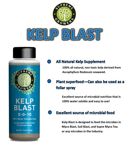 Kelp Blast Concentrate by Supreme Growers Water Soluable Kelp Contains Elements and Vitamins That Enhance Plant Growth and Soil Fertility 5oz Bottle Makes 29 Gallons