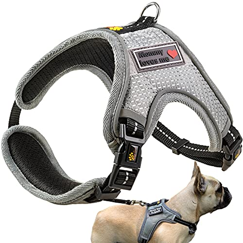 ADITYNA Dog Harnesses for Small Dogs - Dog Harness for Small Dogs No Pull - Small Dog Harness for French Bulldog, Dachshund, and Others