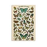 IEJDA Illustrierte Bücher Retro Schmetterling Exemplar