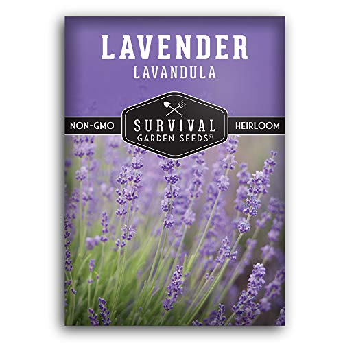 Survival Garden Seeds - Lavender Seed for Planting - Packet with Instructions to Plant and Grow in Your Home Vegetable Garden - Non-GMO Heirloom Variety