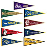 Colonial Athletic Association College Pennant Set