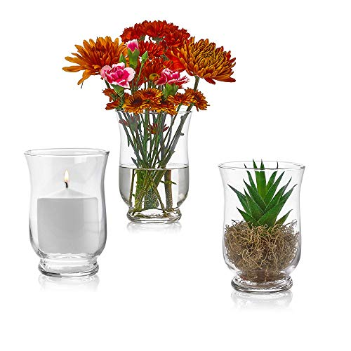 Juego de 3 jarrones de vidrio Hurricane de 6 pulgadas de alto x 4 pulgadas de apertura – Multiusos: soporte para velas de pilar, florero – perfecto como centros de mesa de...