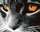 HQQK Pintar por Numeros Adultos Niñost, Ojos de Gato Gris DIY Pintura al óleo Pintura por Números Kit de Pintura al óleo sobre Lienzo,Decoración Hogareña-Sin Marco -16x20inch