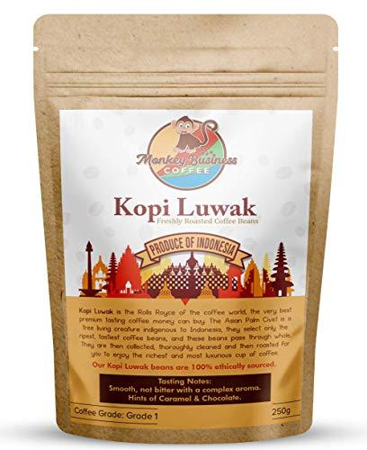 Monkey Business Coffee - Molidos De Café Kopi Luwak Salvaje - 250 Gramos (Otros Pesos Y Tipos De Frijoles Disponibles) - Fuente Sostenible (De Indonesia)