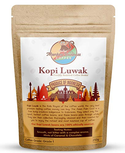 Monkey Business Coffee - Wild Kopi Luwak Coffee Whole Beans - Ethically Sourced - 250 Grams (8.8oz) (Other Weights & Bean Types Available) - Produce of Indonesia