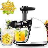 AMZCHEF Extracteur de Jus de Fruits et Légumes Sans BPA Slow Juicer Presse à Froid Machine avec moteur silencieux/tasse à jus/brosse de nettoyage/adapté à tous les Fruits et Légumes