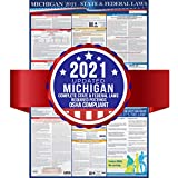 2019 Michigan State and Federal Labor Laws Poster – OSHA Workplace Compliant 24' x 36' – Todo en uno requerido envío – UV Coated