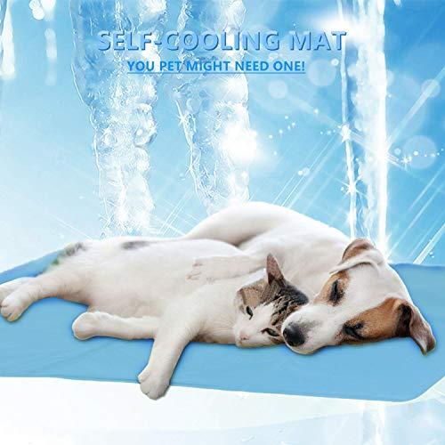 X Grande Auto Refrigeración Cool Gel Estera para Mascota Perro Gato calor alivio de no tóxico Verano XL UK